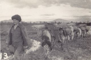Photo Album of Far Eastern Russia With a Number Depicting the Chukchi and Other Native Peoples.